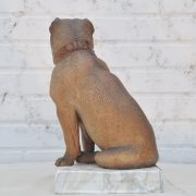 goldcheiderdog116d
